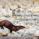 """Photography takes an instant out of time, altering life by holding it still."" - Dorothea Lange"