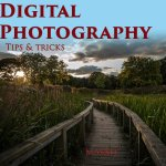 Digital photography tips and tricks: Quick tips and tricks for all photographers