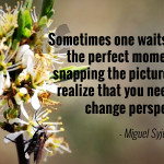 """Sometimes one waits too long for the perfect moment before snapping the picture. You never realize that you needed was to change perspective."" - Miguel Syjuco"