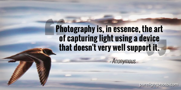 """Photography is, in essence, the art of capturing light using a device that doesn't very well support it."" - Anonymous"