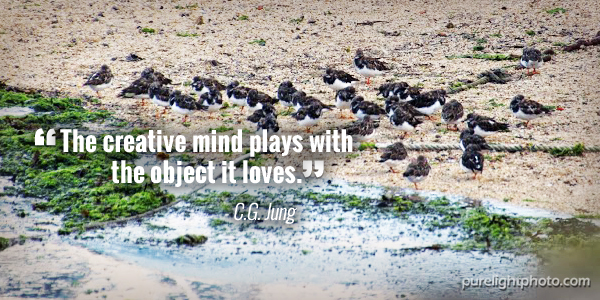 """""""The creative mind plays with the object it loves."""" C G Jung"""