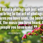 """You don't make a photograph just with a camera. You bring to the act of photography all the pictures you have seen, the books you have read, the music you have heard, the people you have loved."" - Ansel Adams"