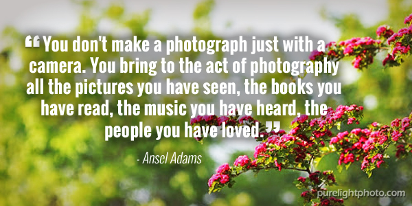 """""""You don't make a photograph just with a camera. You bring to the act of photography all the pictures you have seen, the books you have read, the music you have heard, the people you have loved."""" - Ansel Adams"""