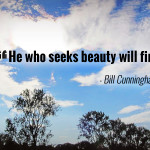 """He who seeks beauty will find it."" - Bill Cunningham"