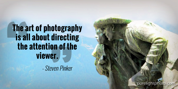 """""""The art of photography is all about directing the attention of the viewer."""" - Steven Pinker"""