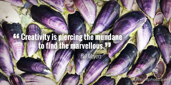 """Creativity is piercing the mundane to find the marvellous."" - Bill Moyers"