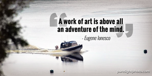 """A work of art is above all an adventure of the mind."" - Eugene Ionesco"