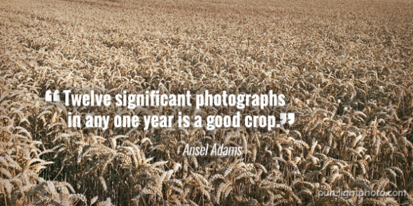 """Twelve significant photographs in any one year is a good crop."" - Ansel Adams"